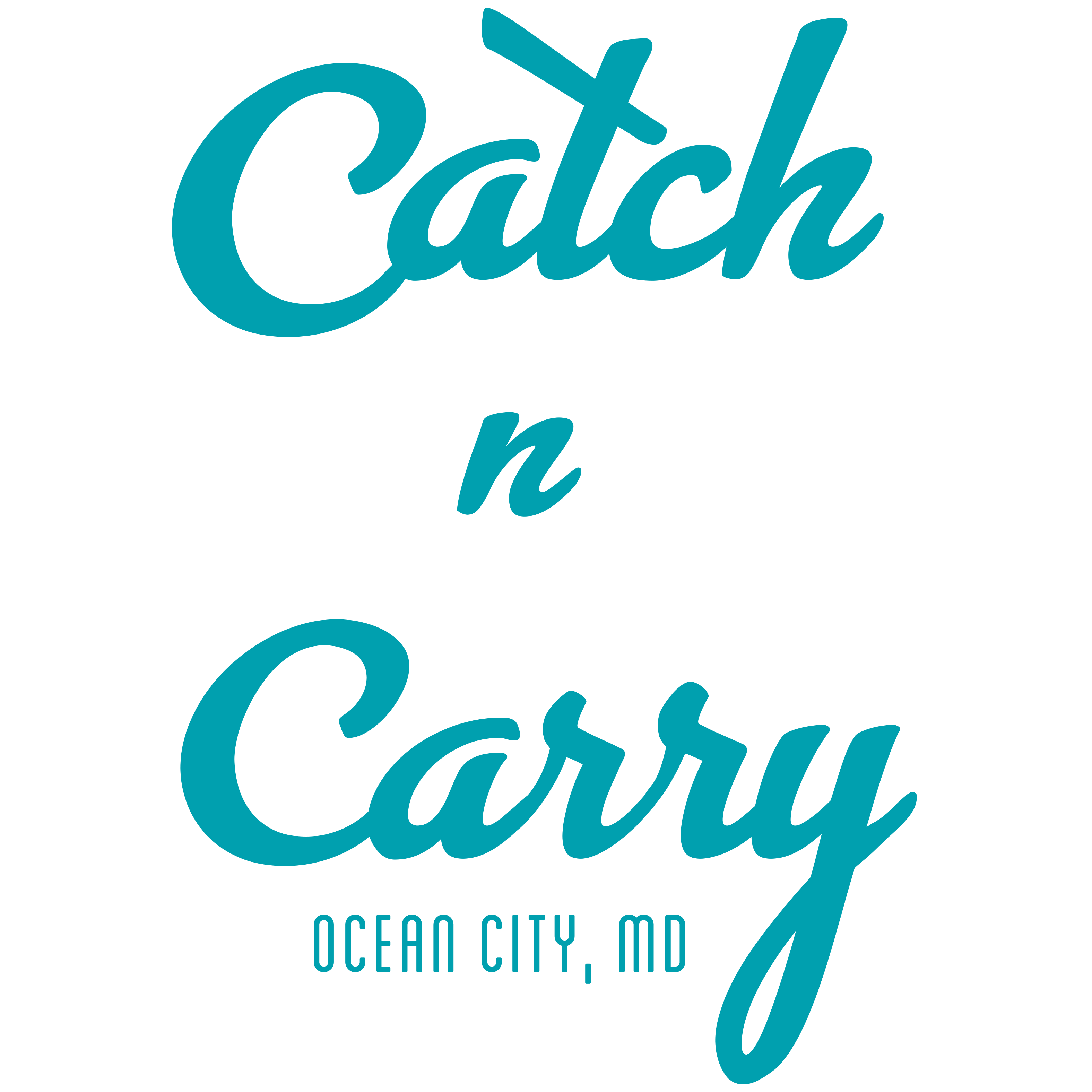 Catch-N-Carry